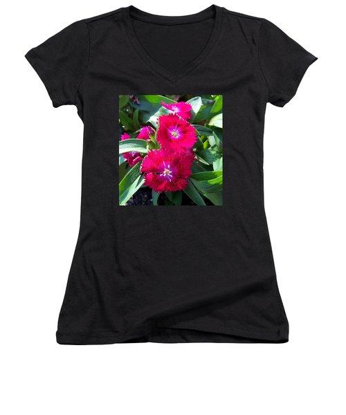Women's V-Neck T-Shirt (Junior Cut) featuring the photograph Garden Delight by Sandi OReilly