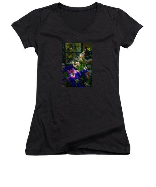 Garden House Delight Women's V-Neck T-Shirt