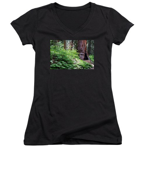 Giant Among The Forest Women's V-Neck T-Shirt (Junior Cut) by Lana Trussell