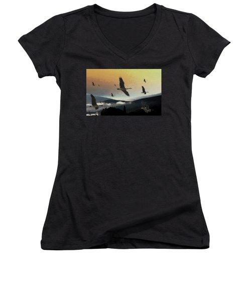 Going South Women's V-Neck T-Shirt (Junior Cut) by John Stuart Webbstock