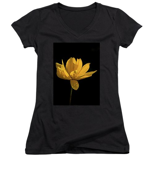 Women's V-Neck T-Shirt (Junior Cut) featuring the photograph Golden Coreopsis by Jacqi Elmslie