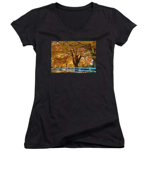 Women's V-Neck T-Shirt (Junior Cut) featuring the photograph Golden Curtain by Robert Pearson