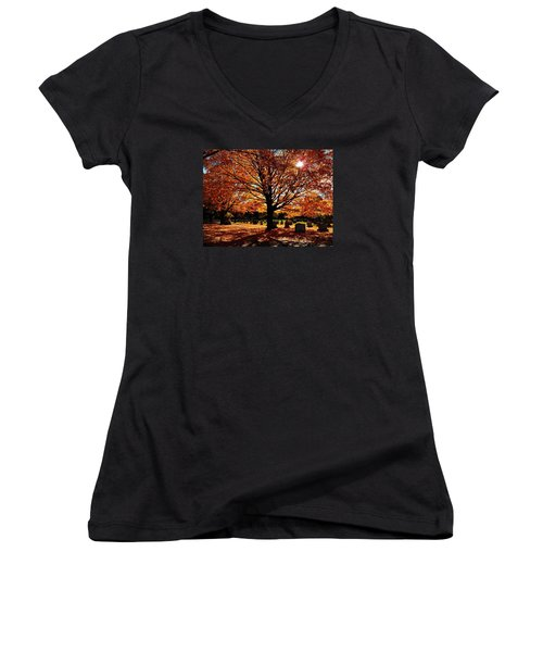 Golden Filter Women's V-Neck T-Shirt