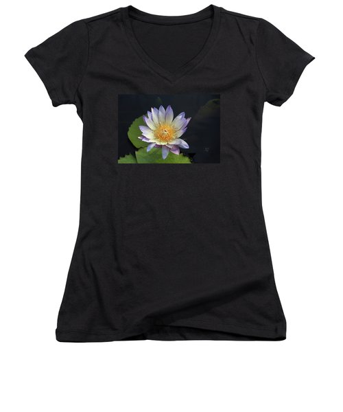 Golden Hue Women's V-Neck T-Shirt