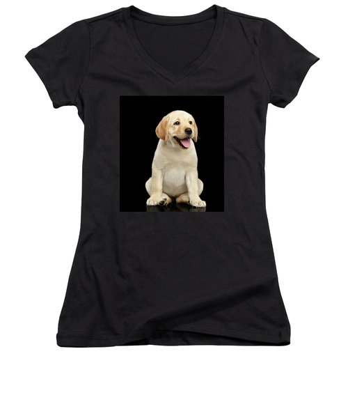 Women's V-Neck featuring the photograph Golden Labrador Retriever Puppy Isolated On Black Background by Sergey Taran