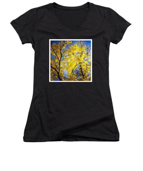 Golden October Tree In Fall Women's V-Neck