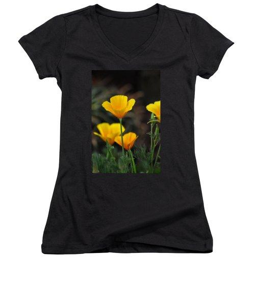 Golden Poppies  Women's V-Neck