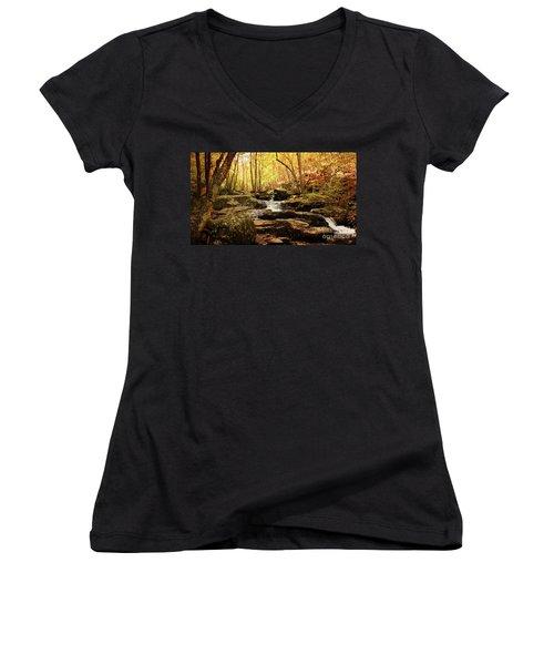 Golden Serenity Women's V-Neck T-Shirt (Junior Cut) by Rebecca Davis