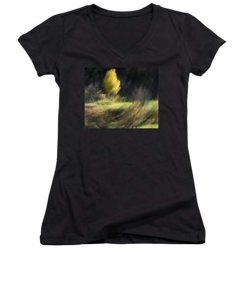 Gone With The Wind Women's V-Neck T-Shirt (Junior Cut) by Raffaella Lunelli