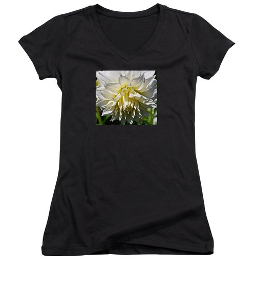 Graceful Dahlia  Women's V-Neck T-Shirt