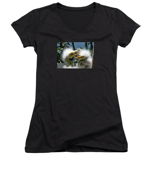 Great Egret Chicks Women's V-Neck T-Shirt