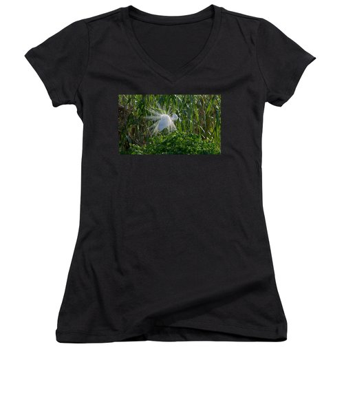 Great Egret In Flight With Windy Plumage Women's V-Neck T-Shirt