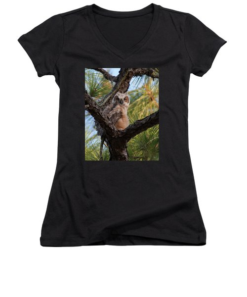 Great Horned Owlet Women's V-Neck (Athletic Fit)