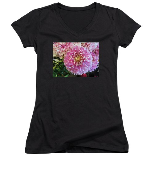 Great Pleasure Women's V-Neck T-Shirt