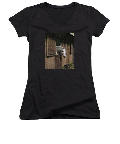 Grey Horse In The Stable - Waiting For Dinner Women's V-Neck T-Shirt (Junior Cut) by Jayne Wilson