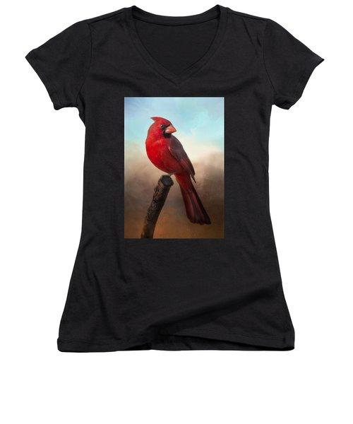 Handsome Cardinal Women's V-Neck T-Shirt (Junior Cut) by Barbara Manis