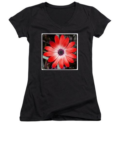 Women's V-Neck featuring the photograph Happy Birthday Carl by Mr Photojimsf