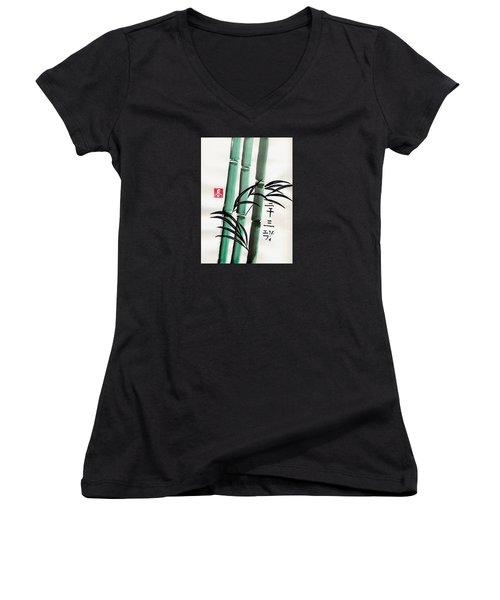 Abundance Women's V-Neck T-Shirt (Junior Cut) by Linda Velasquez