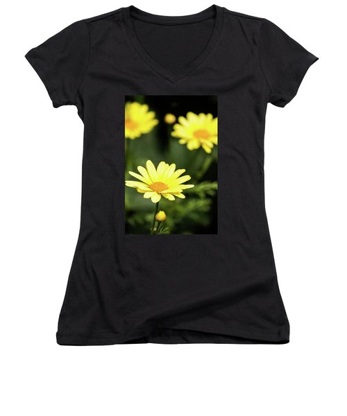 Happy Summer Flowers Women's V-Neck