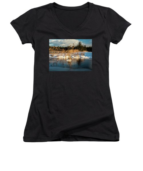 Hard Frosts And Icy Drafts Women's V-Neck