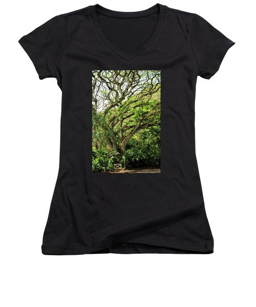 Hawaii Tree-bard Women's V-Neck T-Shirt (Junior Cut) by Denise Moore