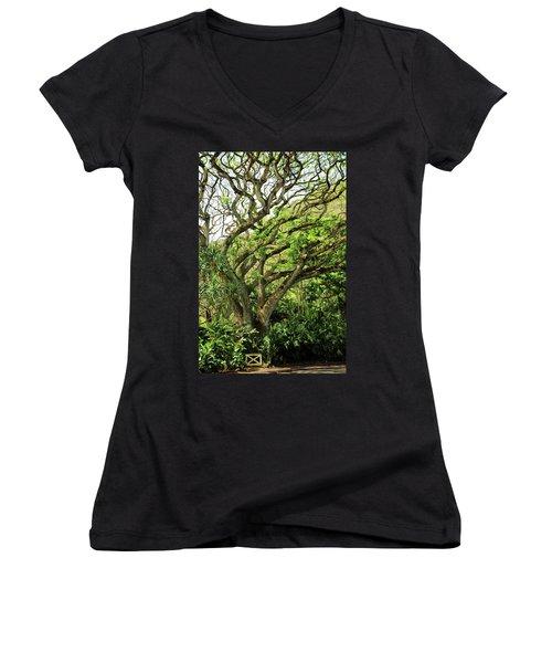Hawaii Tree-bard Women's V-Neck T-Shirt