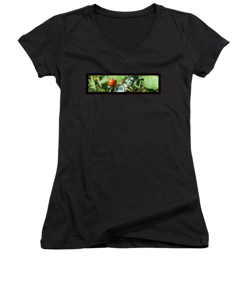 Women's V-Neck featuring the photograph Hello Lady by Robert Knight