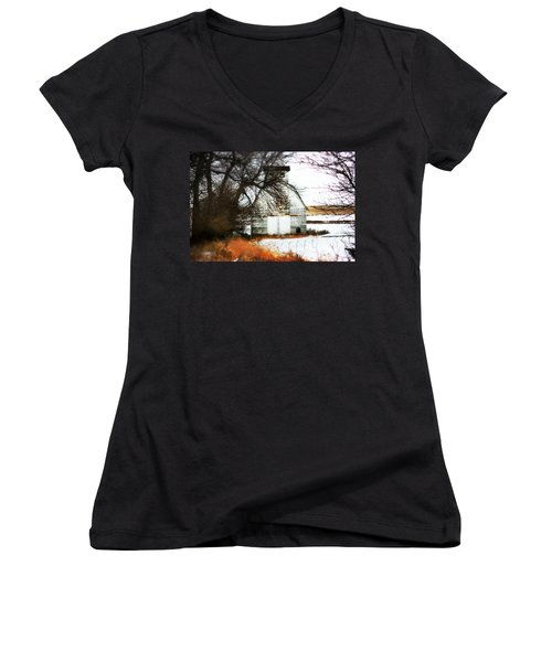Women's V-Neck T-Shirt (Junior Cut) featuring the photograph Hello There by Julie Hamilton