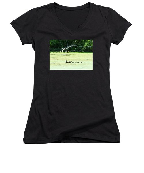 Hen And Baby Wood Ducks Women's V-Neck T-Shirt (Junior Cut) by Edward Peterson