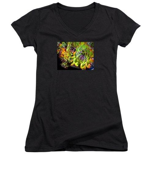 Hens 'n Chicks Women's V-Neck T-Shirt (Junior Cut) by Lori Seaman