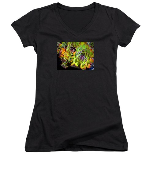Hens 'n Chicks Women's V-Neck T-Shirt