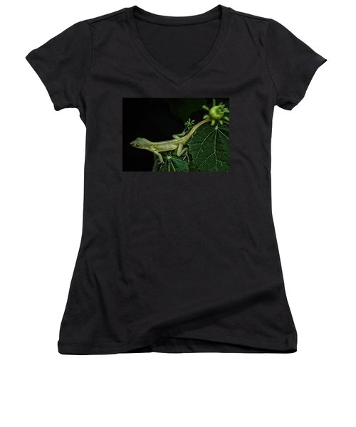 Here Lizard Lizard Women's V-Neck T-Shirt (Junior Cut) by Kim Henderson