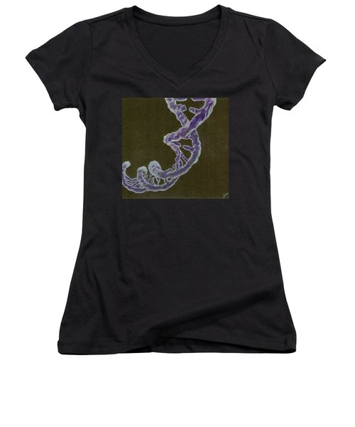 Heredity Women's V-Neck (Athletic Fit)