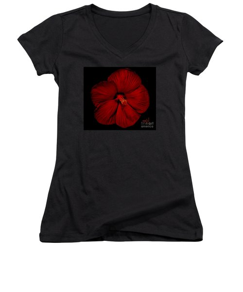 Hibiscus By Moonlight Women's V-Neck T-Shirt (Junior Cut) by Marsha Heiken