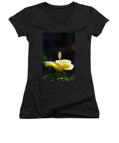 Women's V-Neck T-Shirt (Junior Cut) featuring the photograph Hibiscus Morning by Debbie Karnes