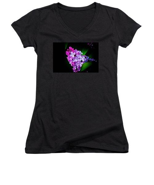 Hidden Beauty Women's V-Neck T-Shirt (Junior Cut) by Bruce Pritchett