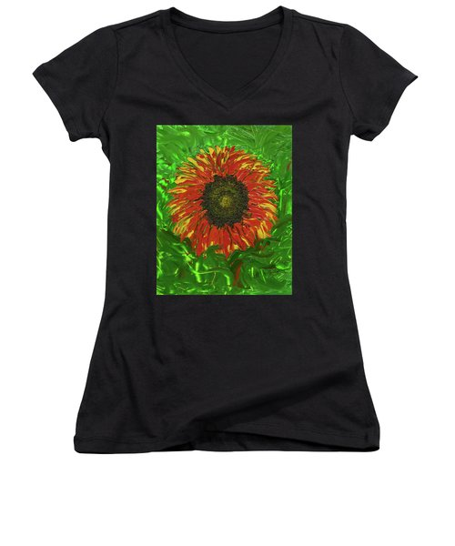 Hidden Beauty Women's V-Neck T-Shirt