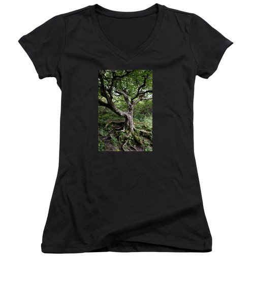 Hold Firm Women's V-Neck T-Shirt (Junior Cut) by Gary Smith