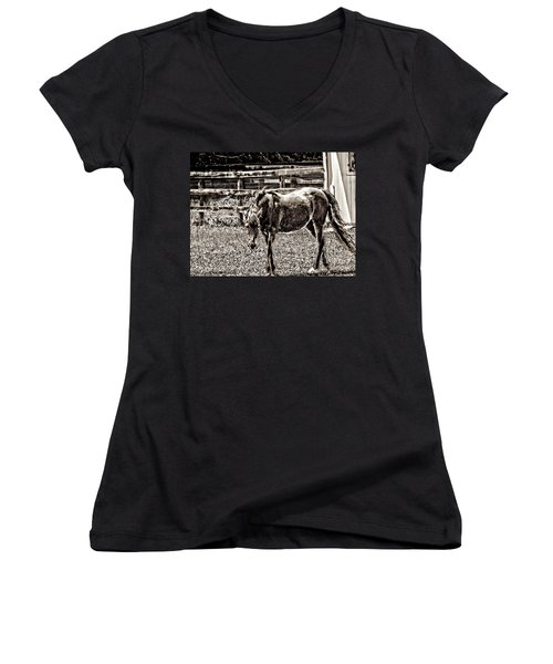 Horse In Black And White Women's V-Neck T-Shirt (Junior Cut) by Annie Zeno
