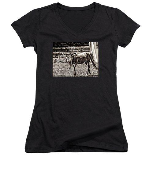 Horse In Black And White Women's V-Neck T-Shirt (Junior Cut)