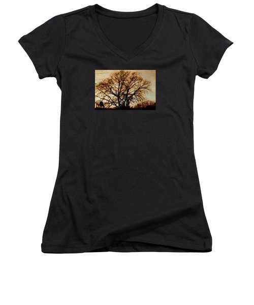 Horse In The Willows Women's V-Neck T-Shirt (Junior Cut) by Rena Trepanier