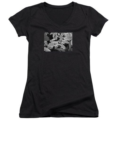 Hosta Bw - Pla363 Women's V-Neck T-Shirt (Junior Cut) by G L Sarti