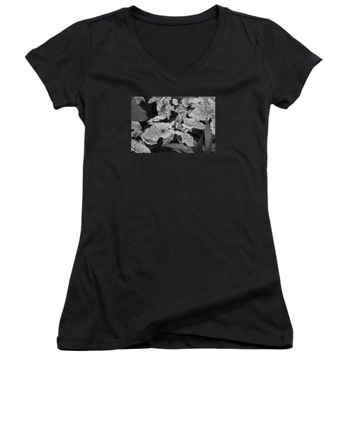 Hosta Bw - Pla363 Women's V-Neck T-Shirt