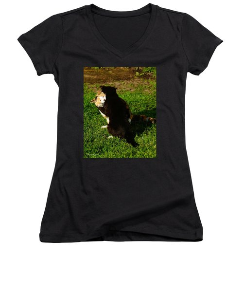Women's V-Neck T-Shirt (Junior Cut) featuring the photograph Hugs 2 by Steven Clipperton