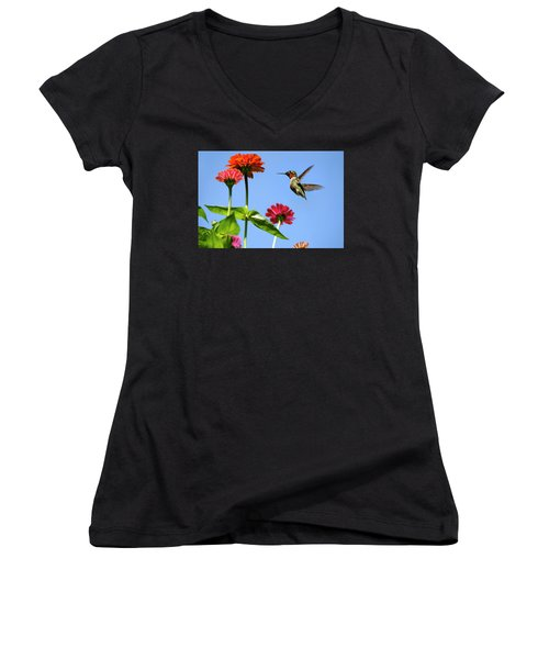 Hummingbird Happiness Women's V-Neck T-Shirt