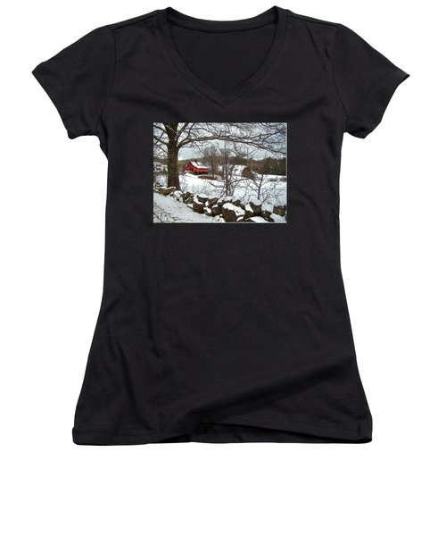 Iconic New Hampshire Women's V-Neck T-Shirt (Junior Cut) by Betsy Zimmerli