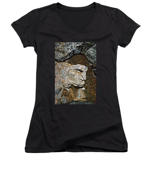 If Looks Could Grill Women's V-Neck