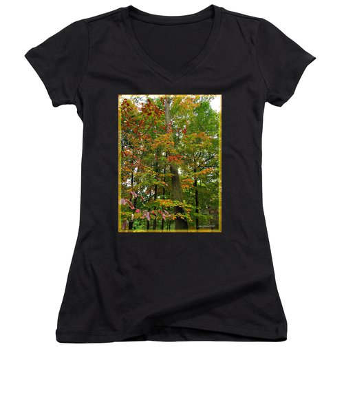 Women's V-Neck T-Shirt (Junior Cut) featuring the photograph In The Height Of Autumn by Joan  Minchak
