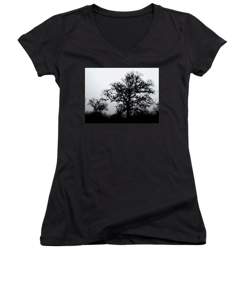 Ink And Photo Study Of Live Oaks Women's V-Neck T-Shirt