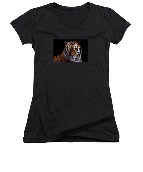 Intense Women's V-Neck T-Shirt (Junior Cut) by Skip Willits